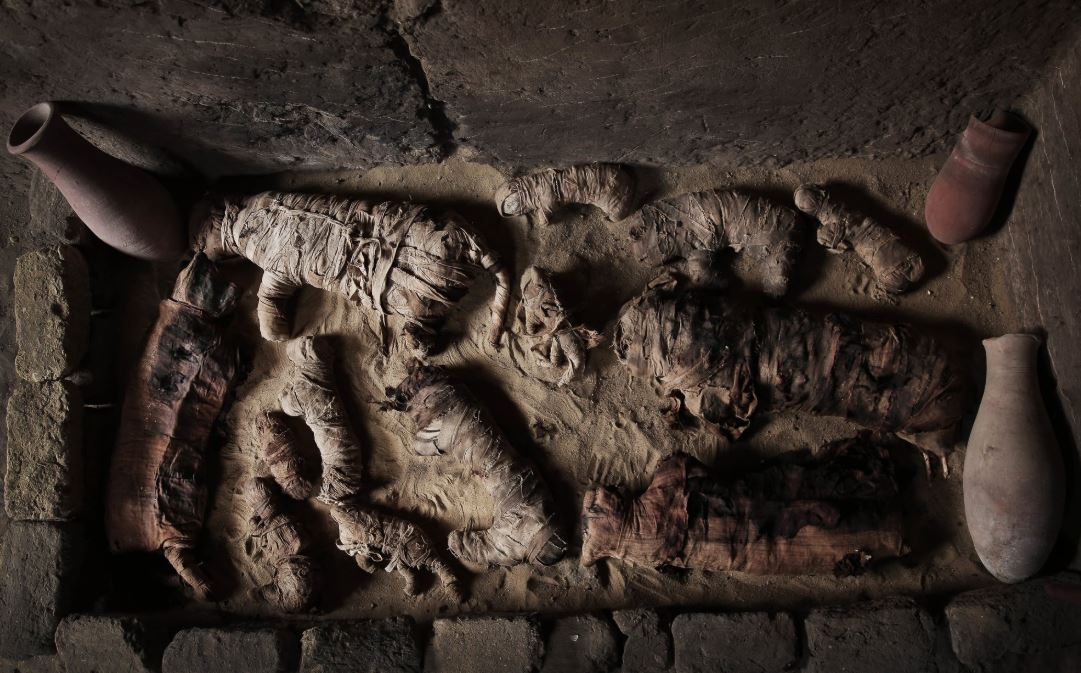 Egypt discovers over 40 mummies in 3 ancient tombs in Minya