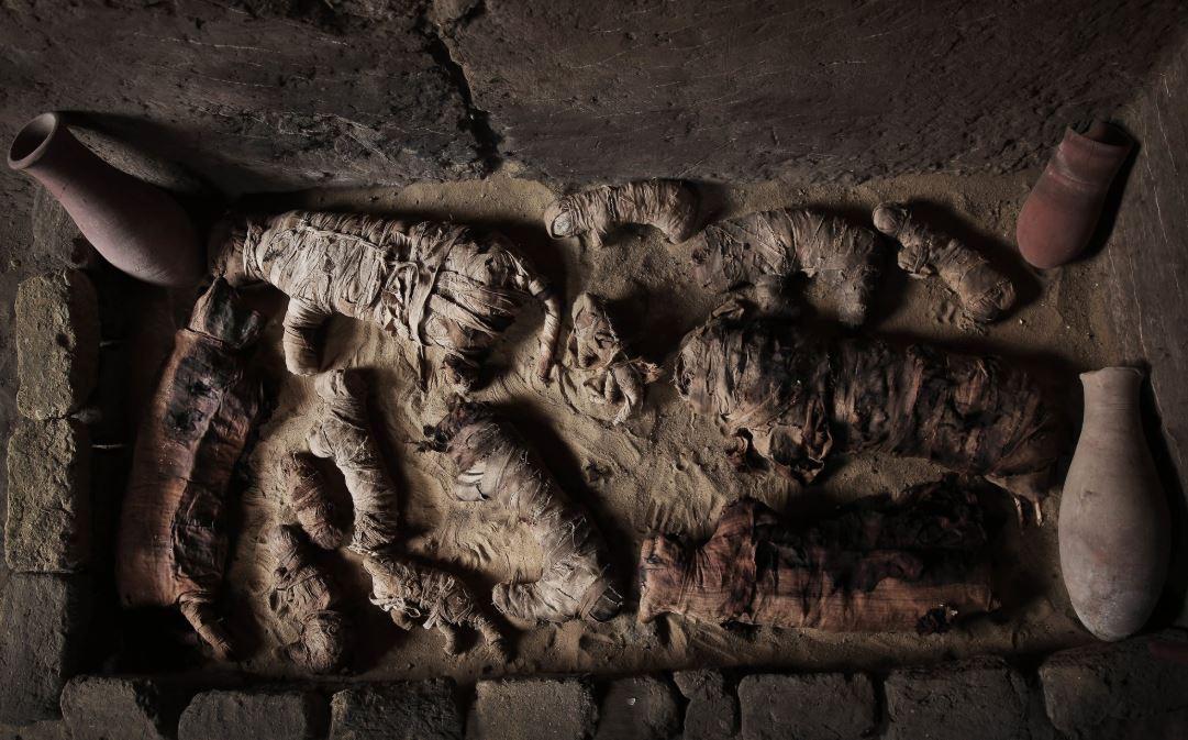 mummies.JPG