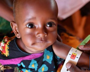 Over 1.5 mln Somalis still face acute food crisis: UN report