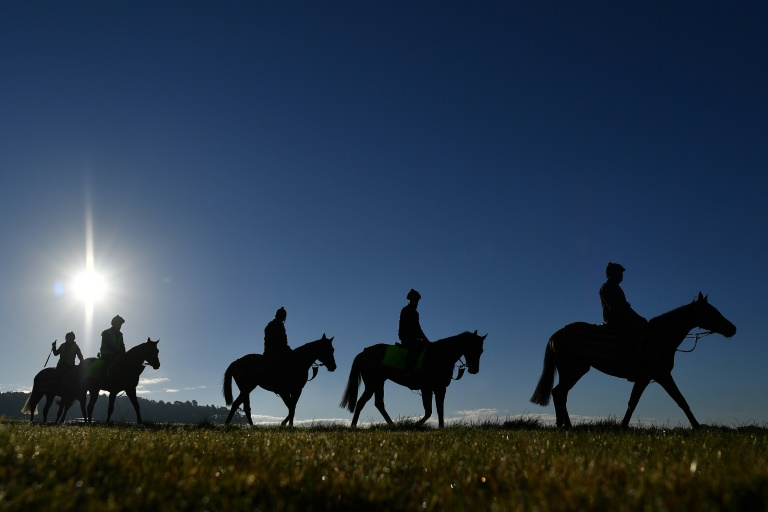 British horse racing cancelled after equine flu outbreak