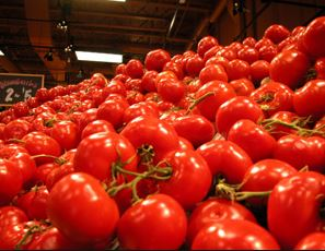 US to withdraw from tomato trade deal with Mexico