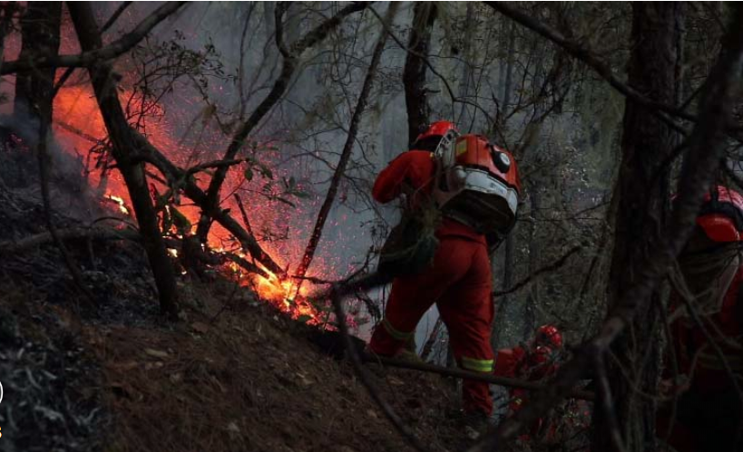 Over 1,500 battle forest fire in Liangshan, SW China