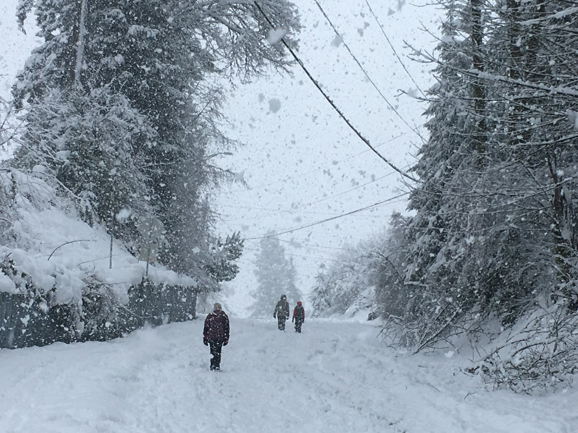 Snow slams.jpeg