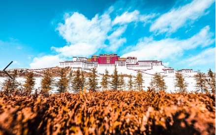 Tibet: alleviating poverty on the roof of the world