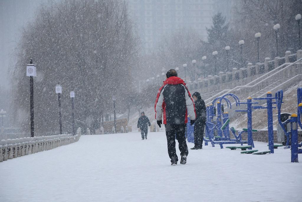 Snow to hit north China, rain to soak south