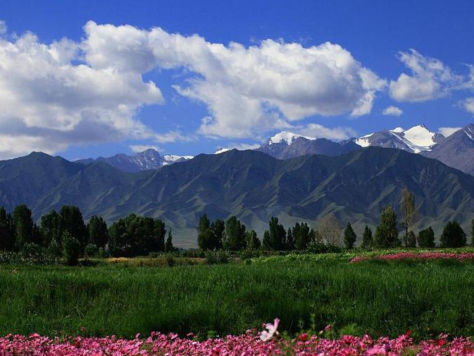Mount Qilian National Park to be set up in 2020