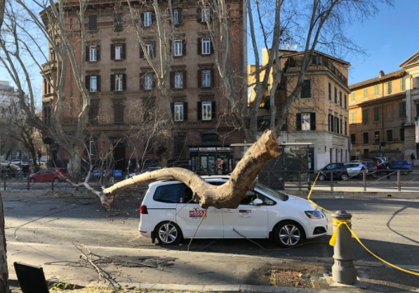 Four dead, several injured as gale-force winds batter Italy