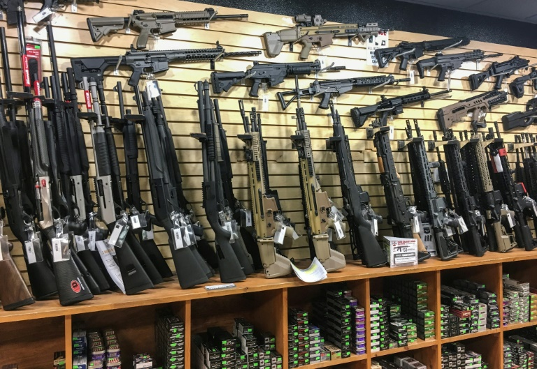 US House votes for background checks in almost all gun sales