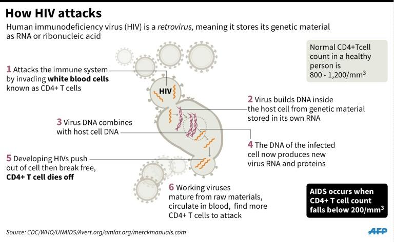 HIV 4.jpg