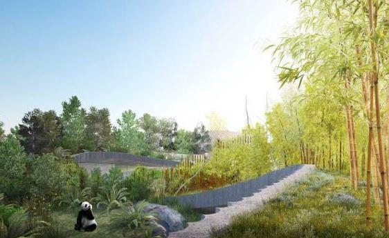 panda enclosure.JPG