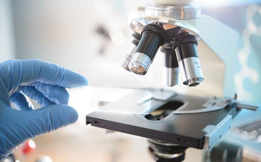 Scientists urge pause in editing human genes