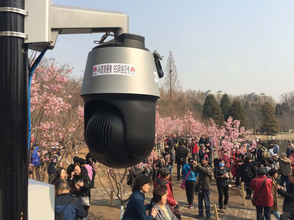 Beijing park showcases 5G network to ease signal congestion during cherry blossom season