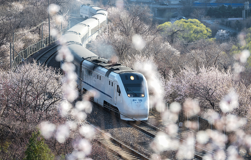 'Train to Spring' rides through flowers
