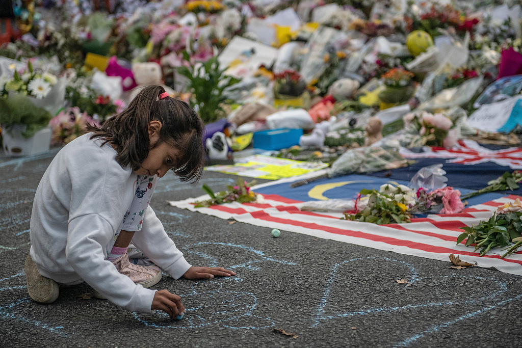 New Zealand reviews gun laws, social media governance after Christchurch attack