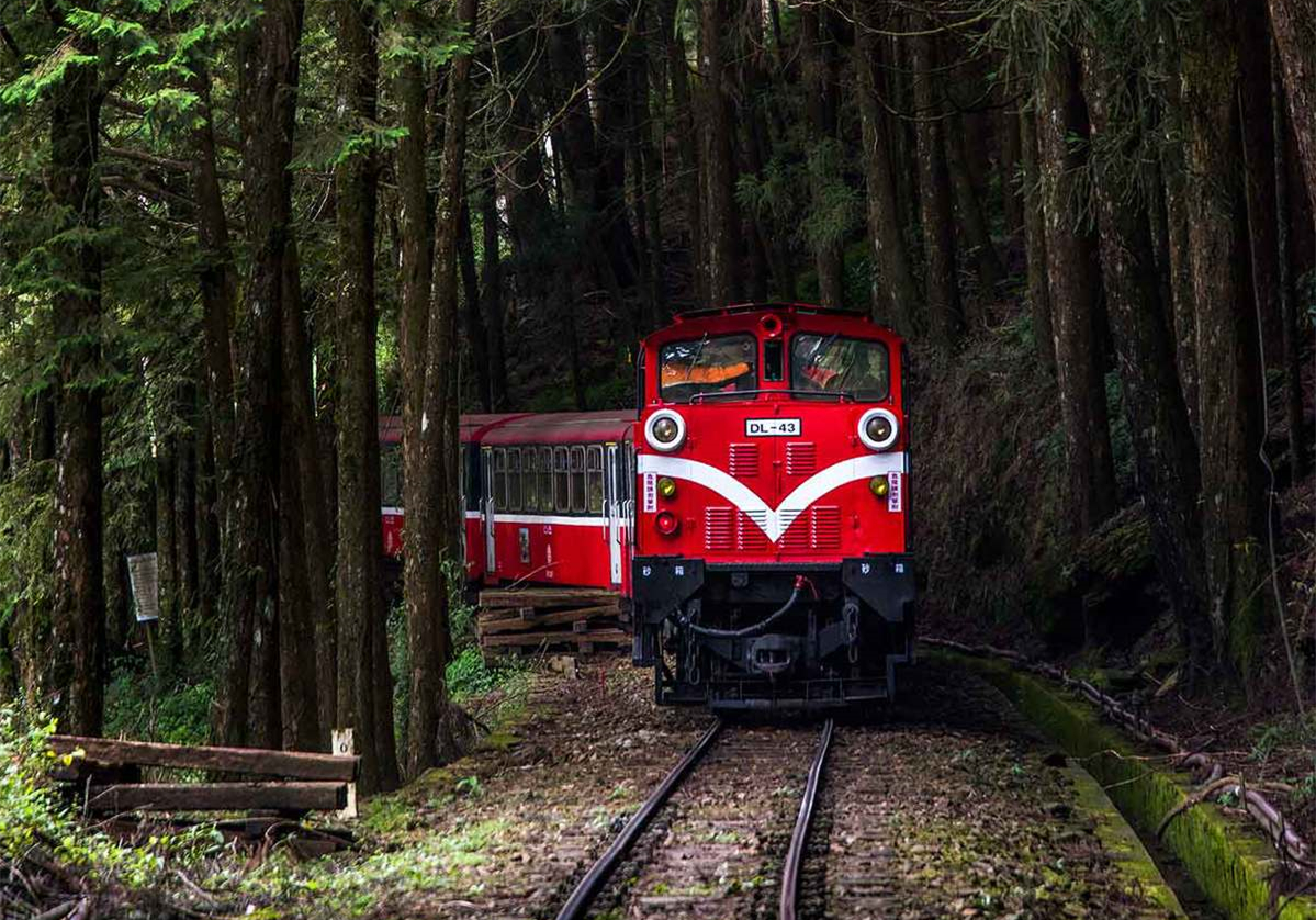 24-year-old clicks 100,000 photos of trains in 30 countries