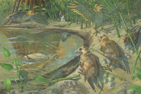 Scientists discover dinosaur-era bird fossil with unlaid egg