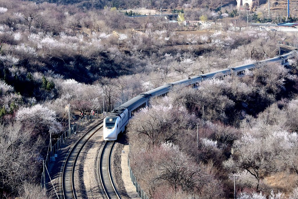 Profits of Chinese train maker CRRC up 4.76 pct in 2018