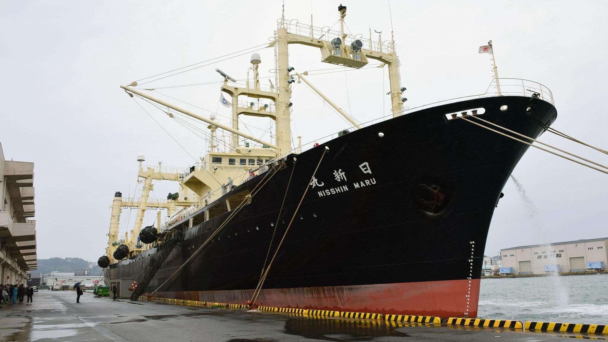 Japanese vessel leaves for last 'research' mission before commercial whaling restarts