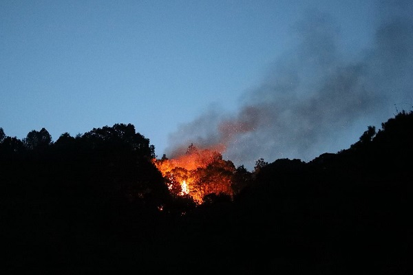 30 firefighters missing in Sichuan forest fire