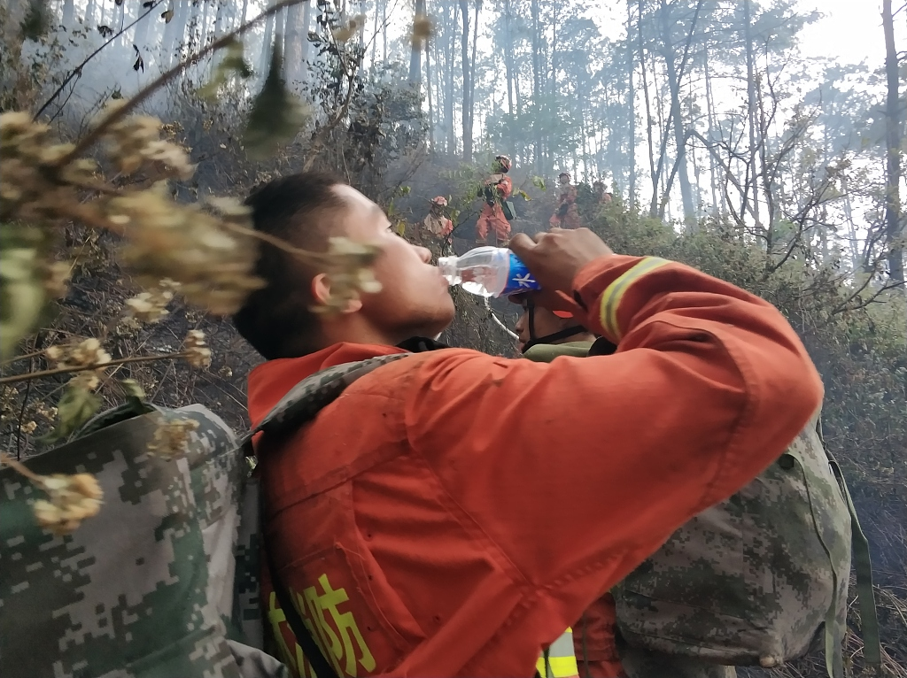 Forest fire killing 30 put out in southwest China's Sichuan