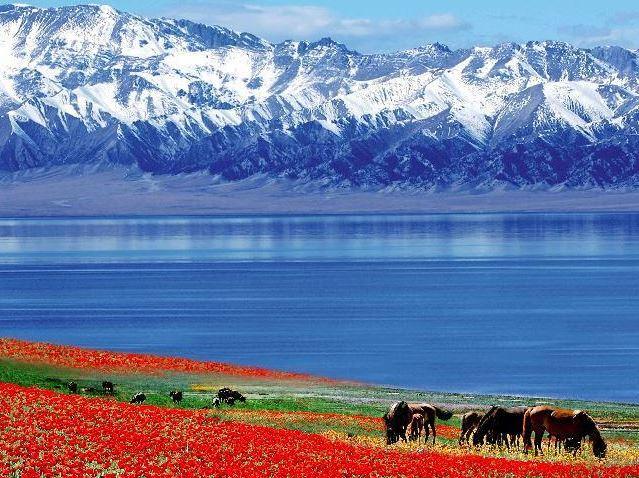 Serbian, Albanian ambassadors visit Xinjiang