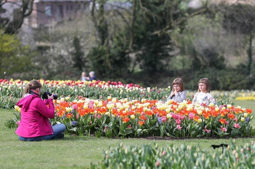 16th Floralia Brussels kicks off