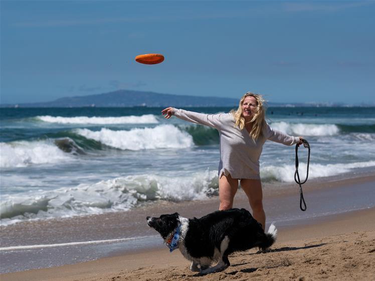 Corgi Beach Day event attracts dog lovers in California, US