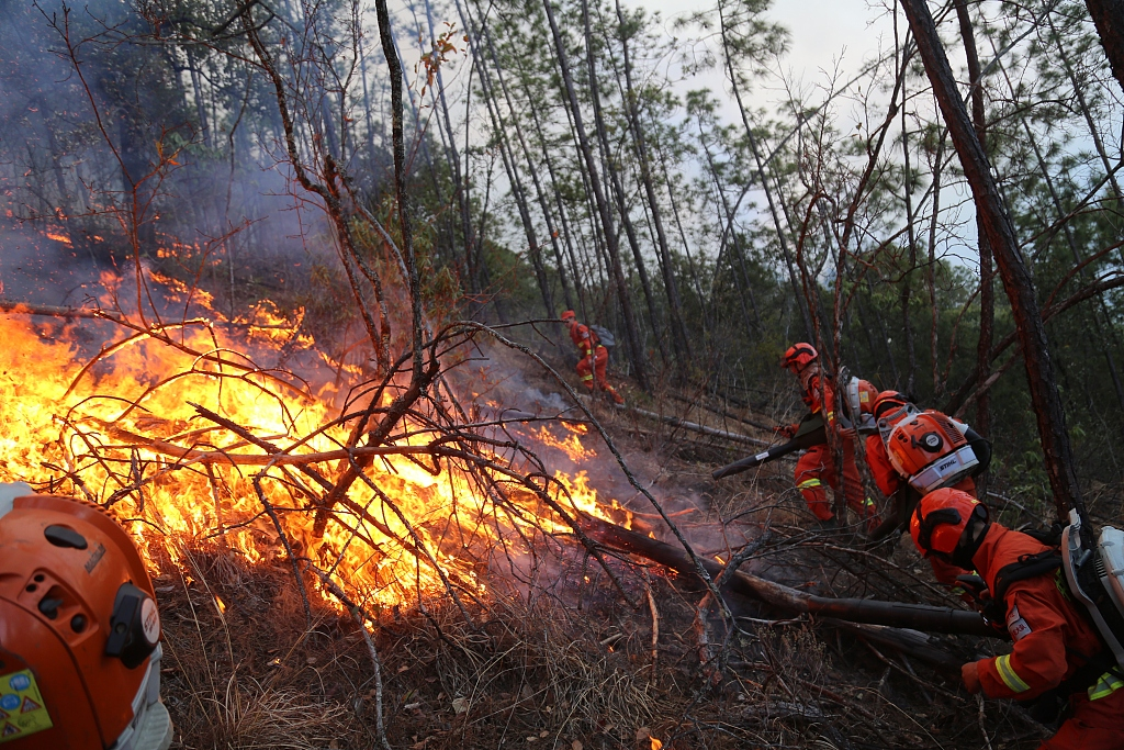 Sichuan battling forest fires in 3 counties