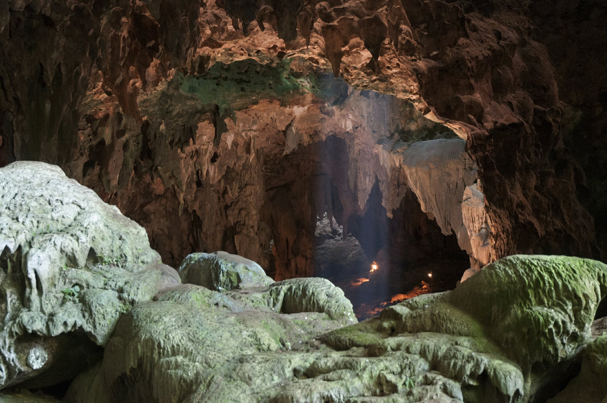 Bones from Philippine cave reveal a new human cousin
