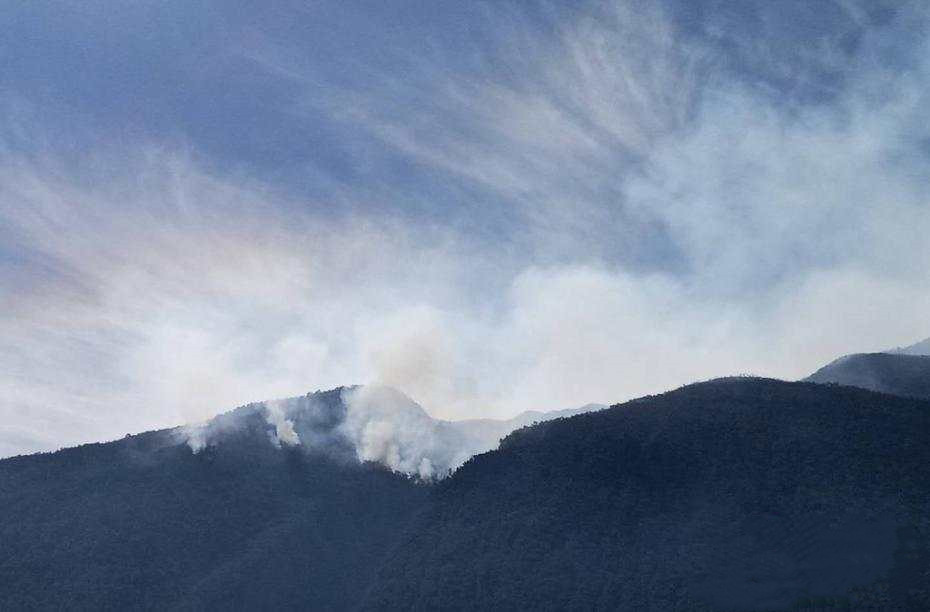 Forest fire breaks out in Yunnan Province