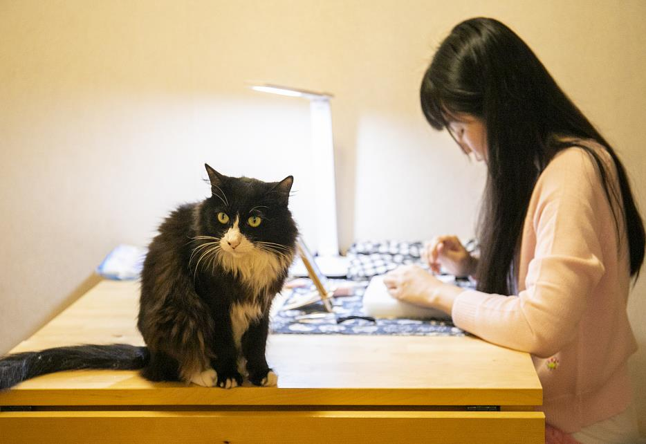 More Chinese youth opt for pets to relieve loneliness