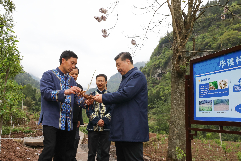 Chinese President Xi Jinping inspects Chongqing