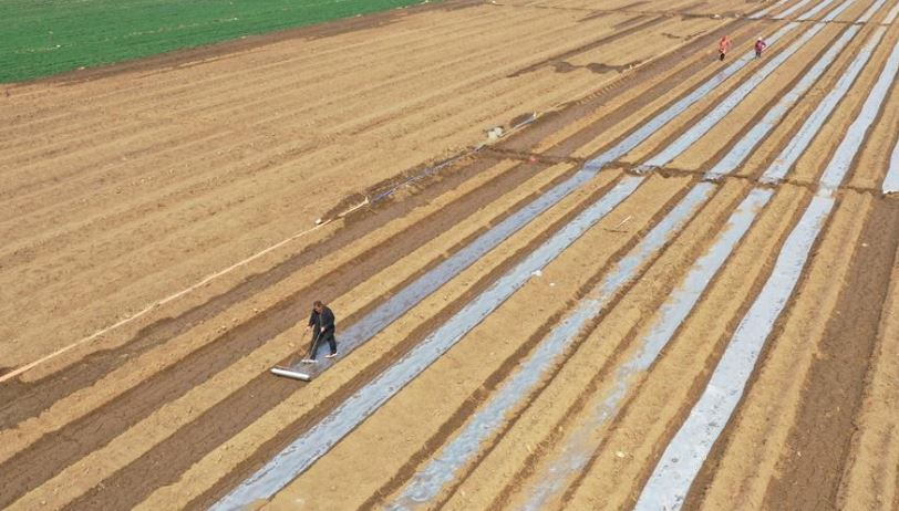 China issues revision of land survey database standards