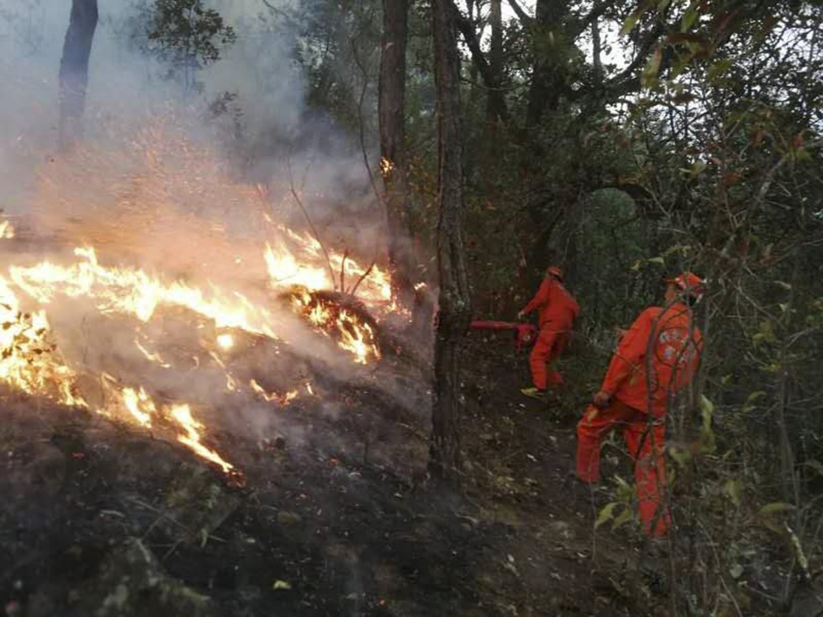 Firefighters battle forest fire in southwest China