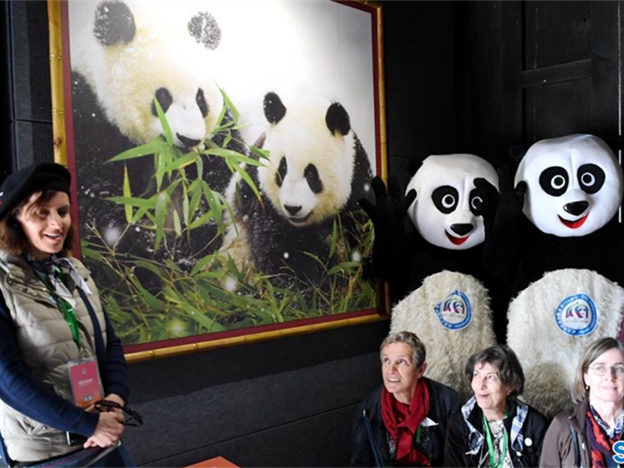 Feature: An unexpected memorial in panda's hometown