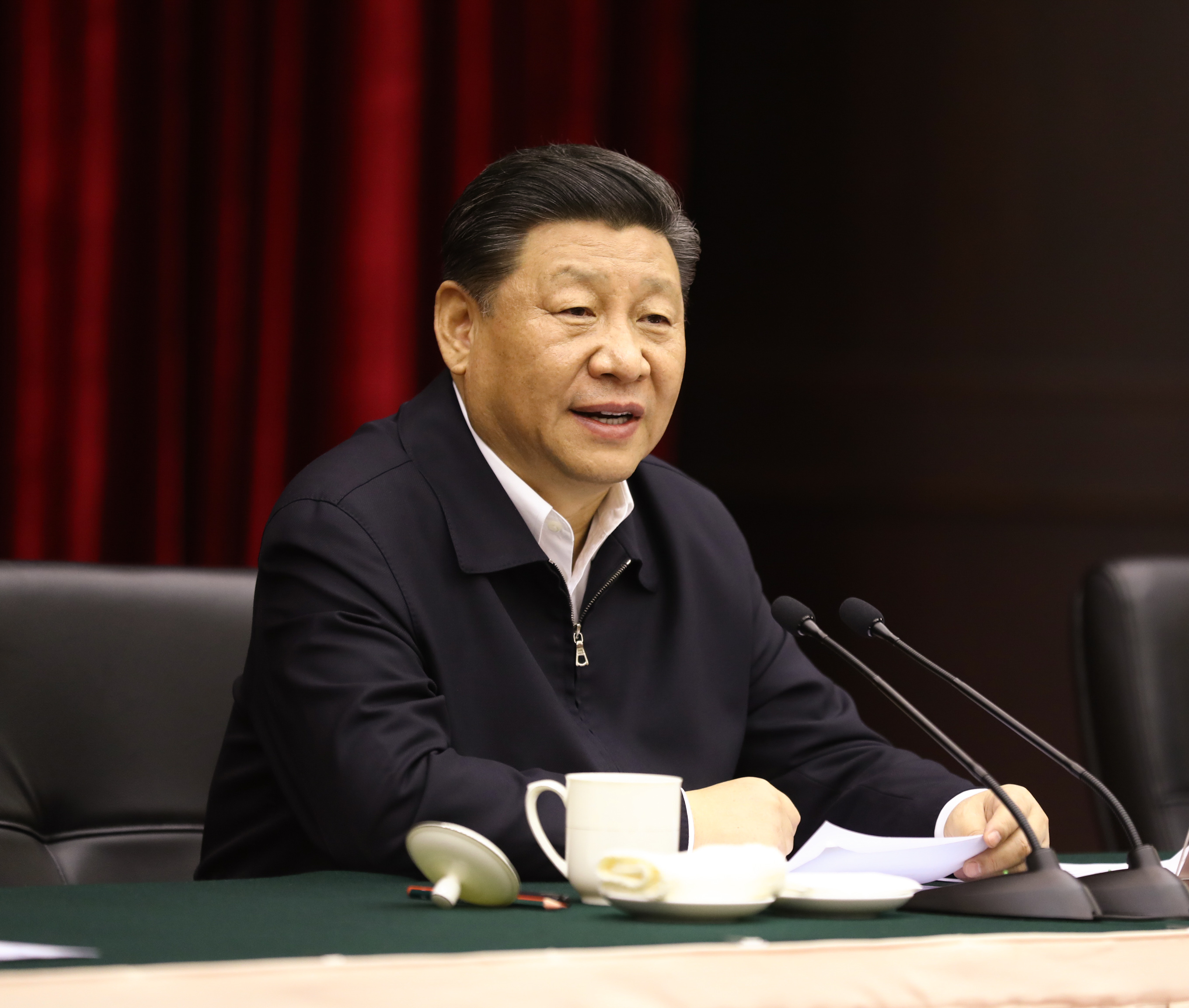 Xi chairs symposium on poverty alleviation in Chongqing