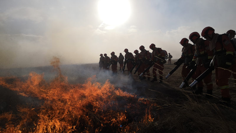 Hulun Buir fire spreading from Russia put out in North China