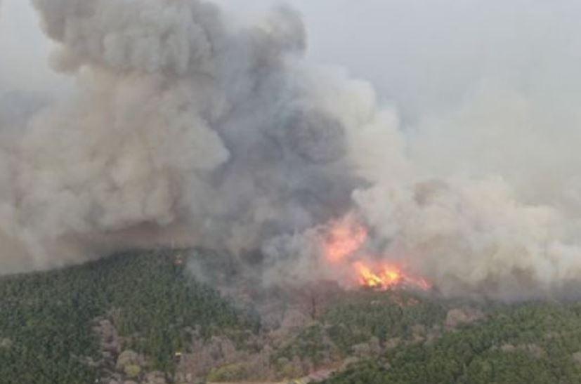 Fire breaks out near mountain in NE China