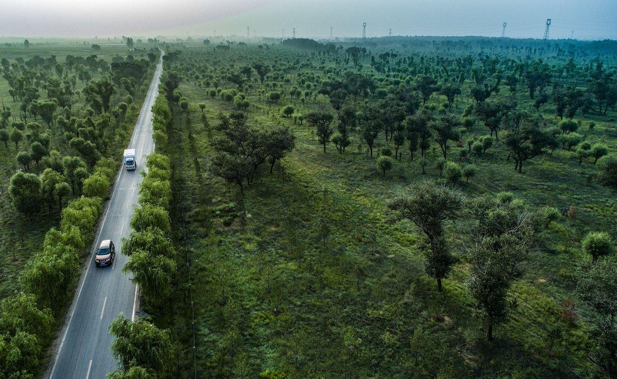 China forest reserves.jpg