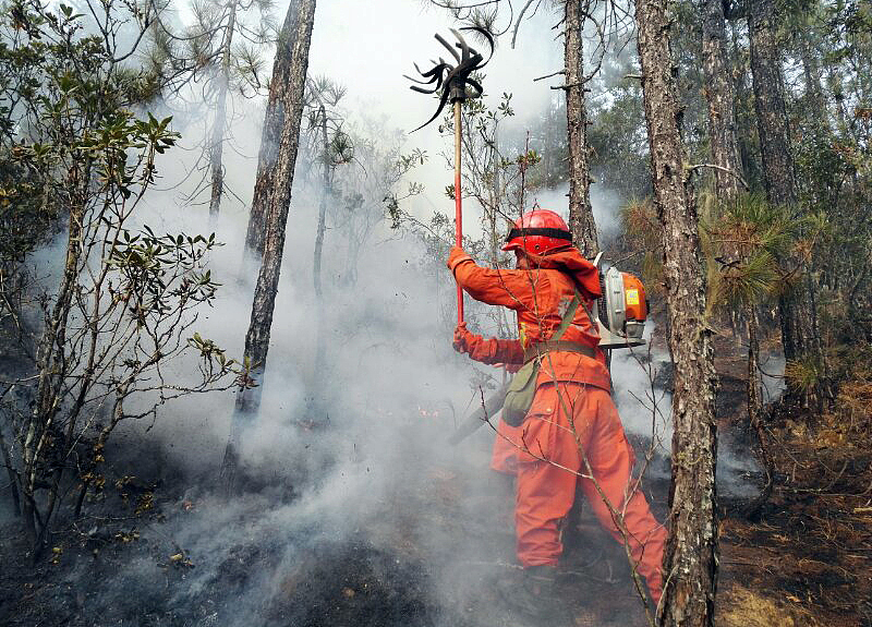 Forest fire erupts in Lijiang, SW China