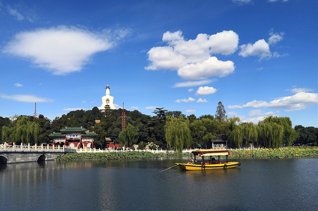 China's environmental improvement efforts make real progress: expert
