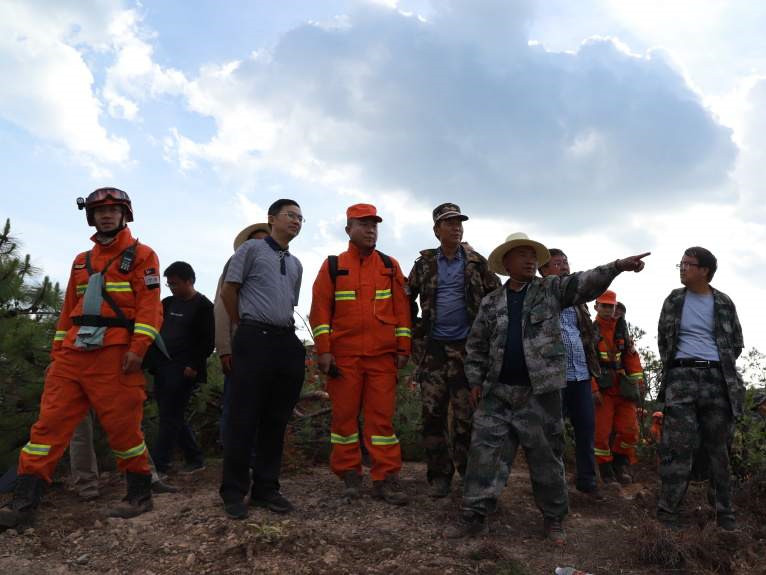 Forest fire in SW China put out; suspect under control