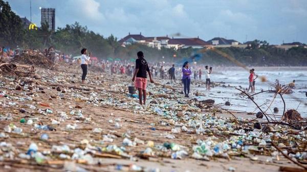 Report: Nature's dangerous decline is 'unprecedented'