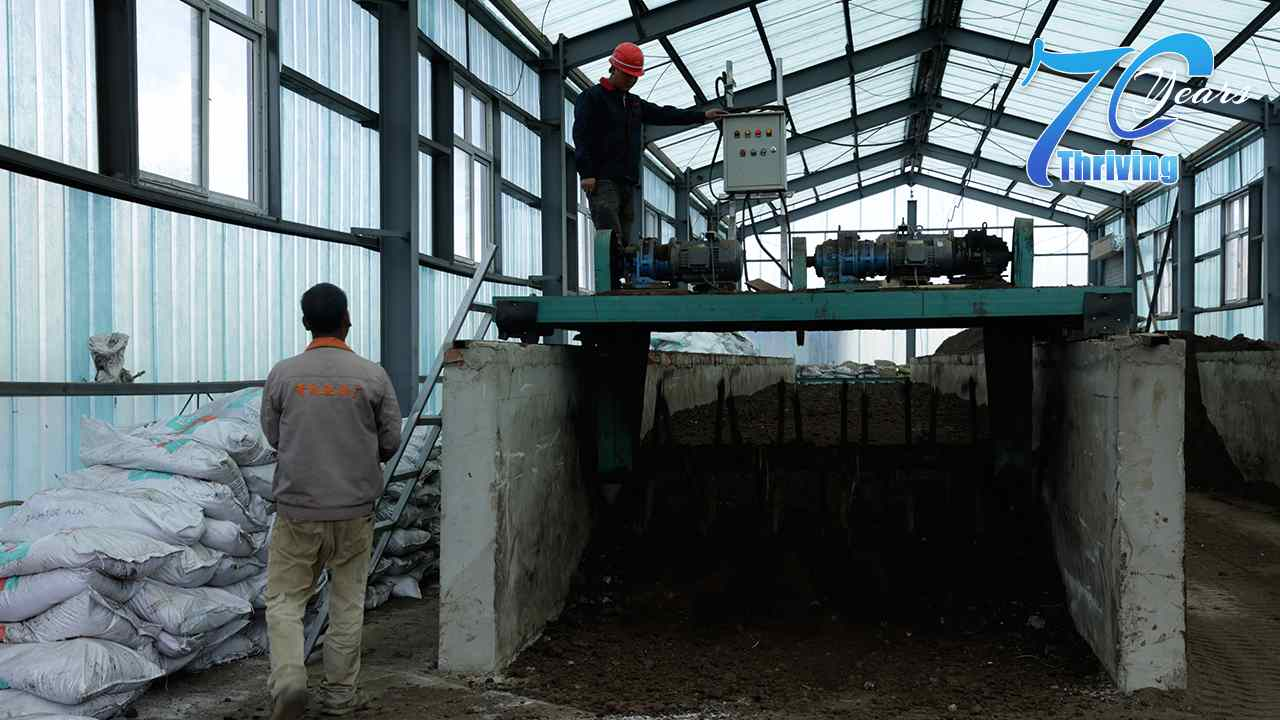 How a town in China turned cow dung into pungent profits