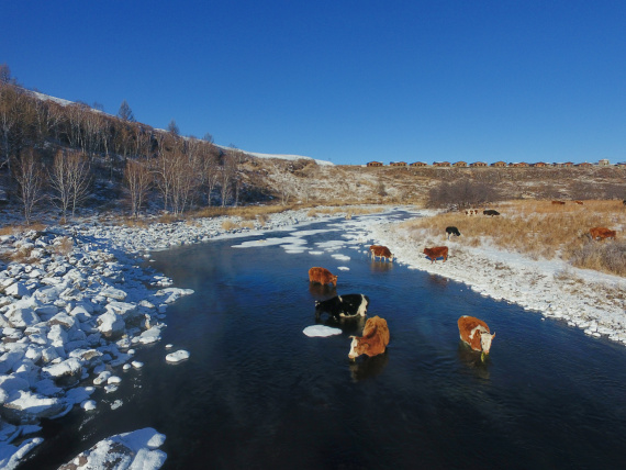 Arxan UNESCO Geopark inaugurated in Inner Mongolia