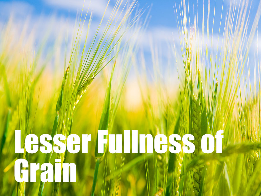 6 things you may not know about Lesser Fullness of Grain
