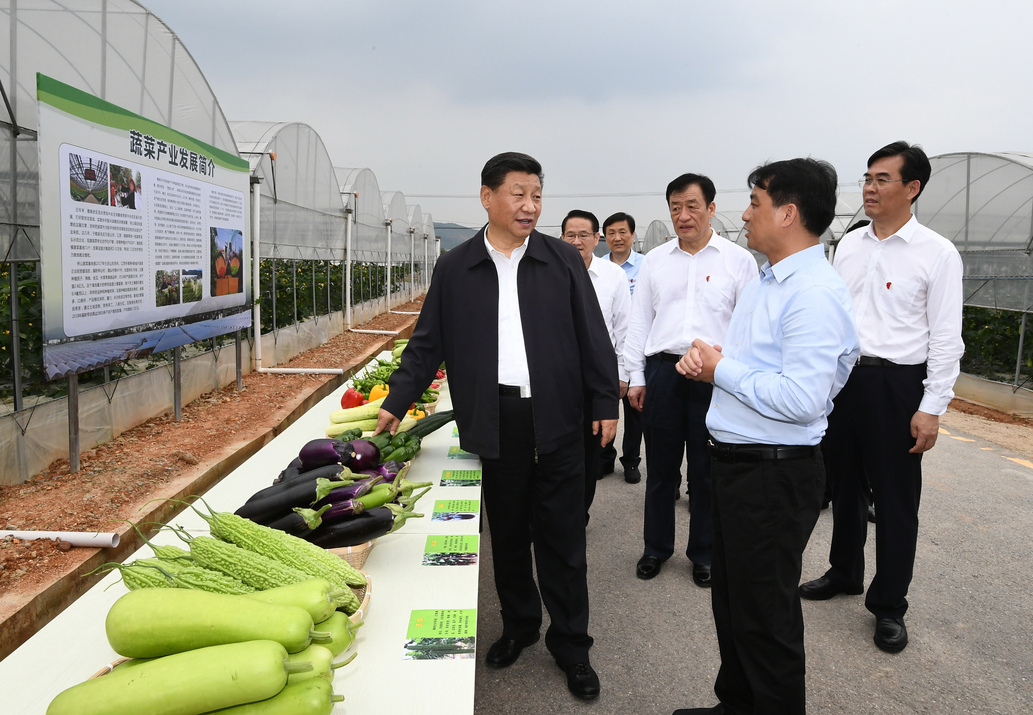 Life will get better like sesame in bloom, President Xi said in his Jiangxi tour
