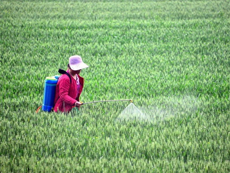 Food safety aims for global goals