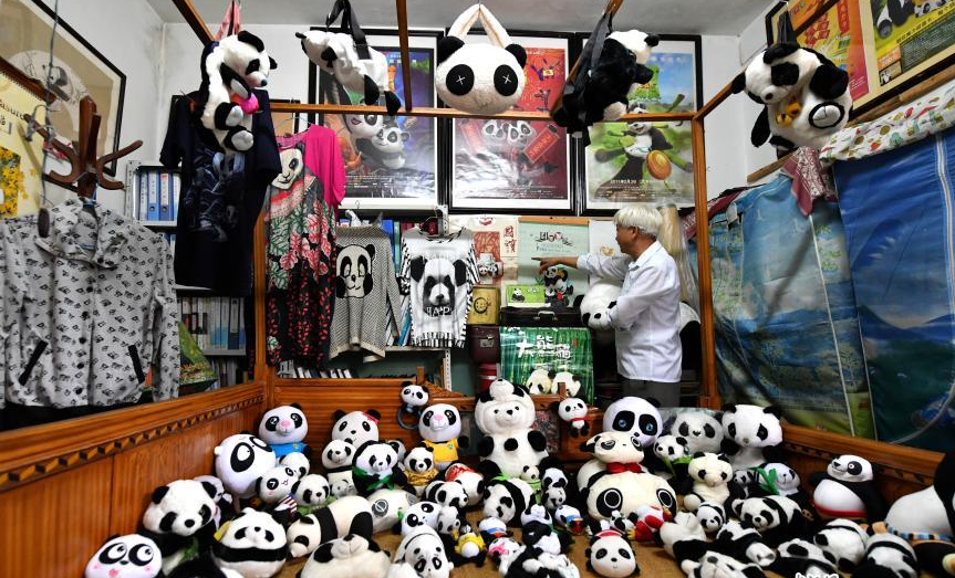 Man collects 10,000 panda-themed items