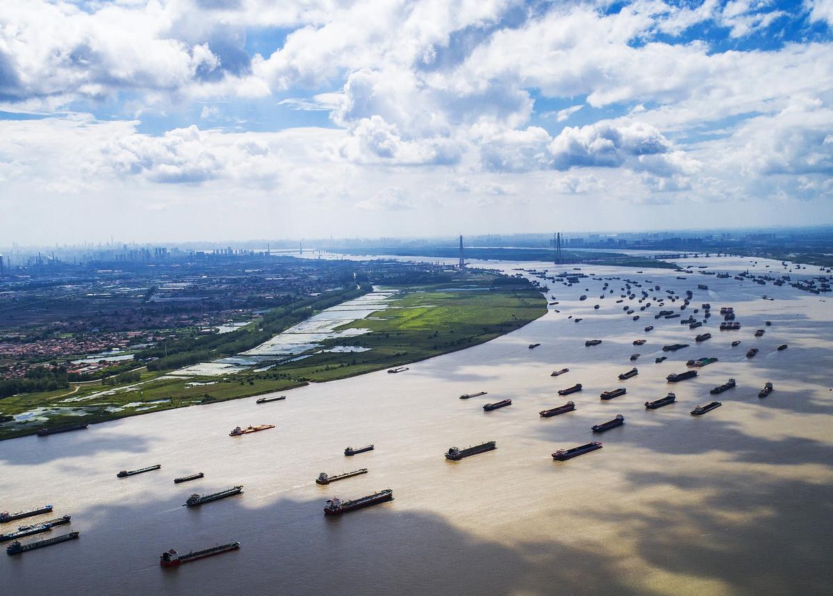 China to strengthen surveys, observation, assessment of biodiversity